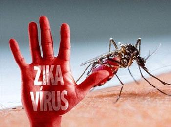 Diệt muỗi phòng tránh dịch Virus Zika