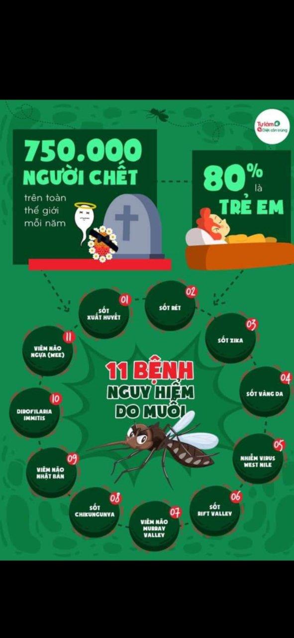 11 Bệnh nguy hiểm do muỗi gây ra và cách phòng chánh