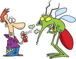 Dịch vụ diệt muỗi, diệt côn trùng chuyên nghiệp