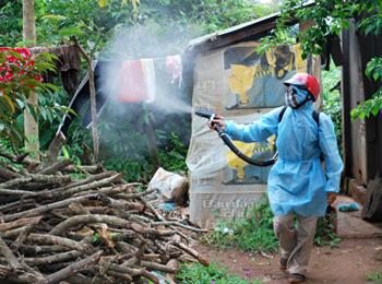 Kỹ năng phòng chống Muỗi
